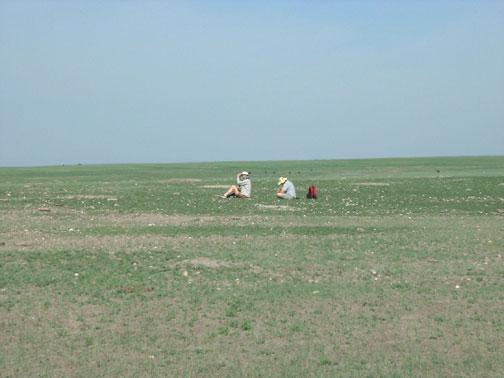 Exploding Prairie Dog